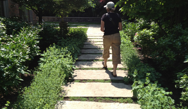 Gallery For Pea Gravel Walkway With Stepping Stones