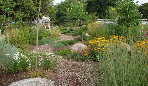 natures-garden-path