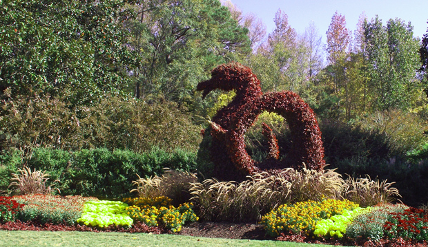 4 Mums and Dragon Topiary