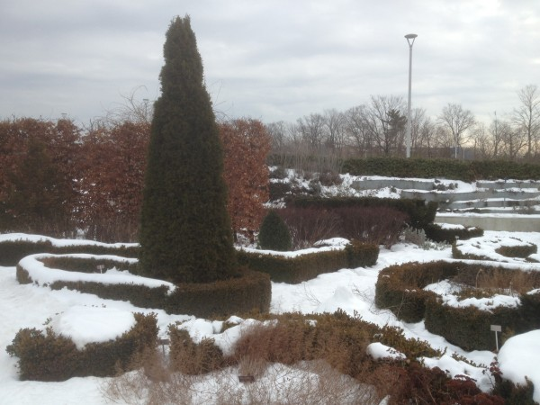 Knot Garden Under Snow January 9,2013