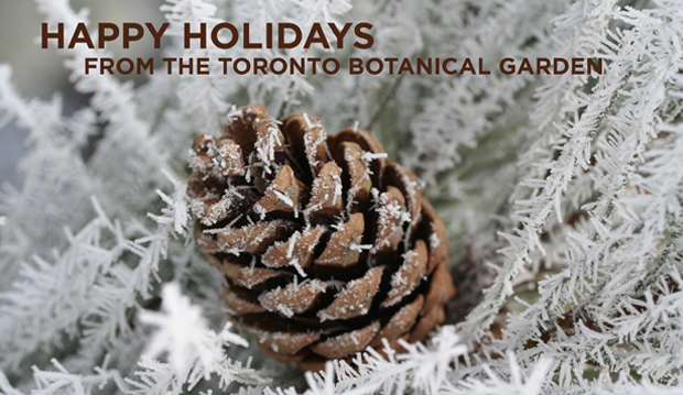 happy holidays from tbg 2013 web