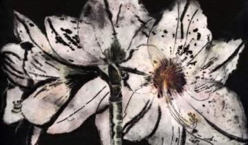botanicals-garden-varieties-amaryllis-1