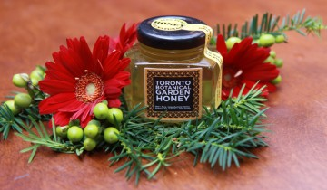 tbg honey web 2014