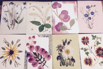 TBG Pressed Flower Group Preserves an Ancient Art