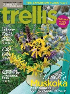 Trellis Summer 2015