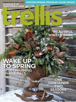 Trellis Winter Spring 2015