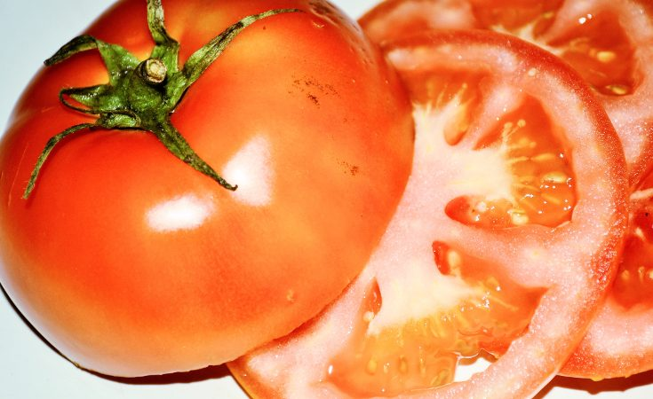 Slice of tomato showing locules.