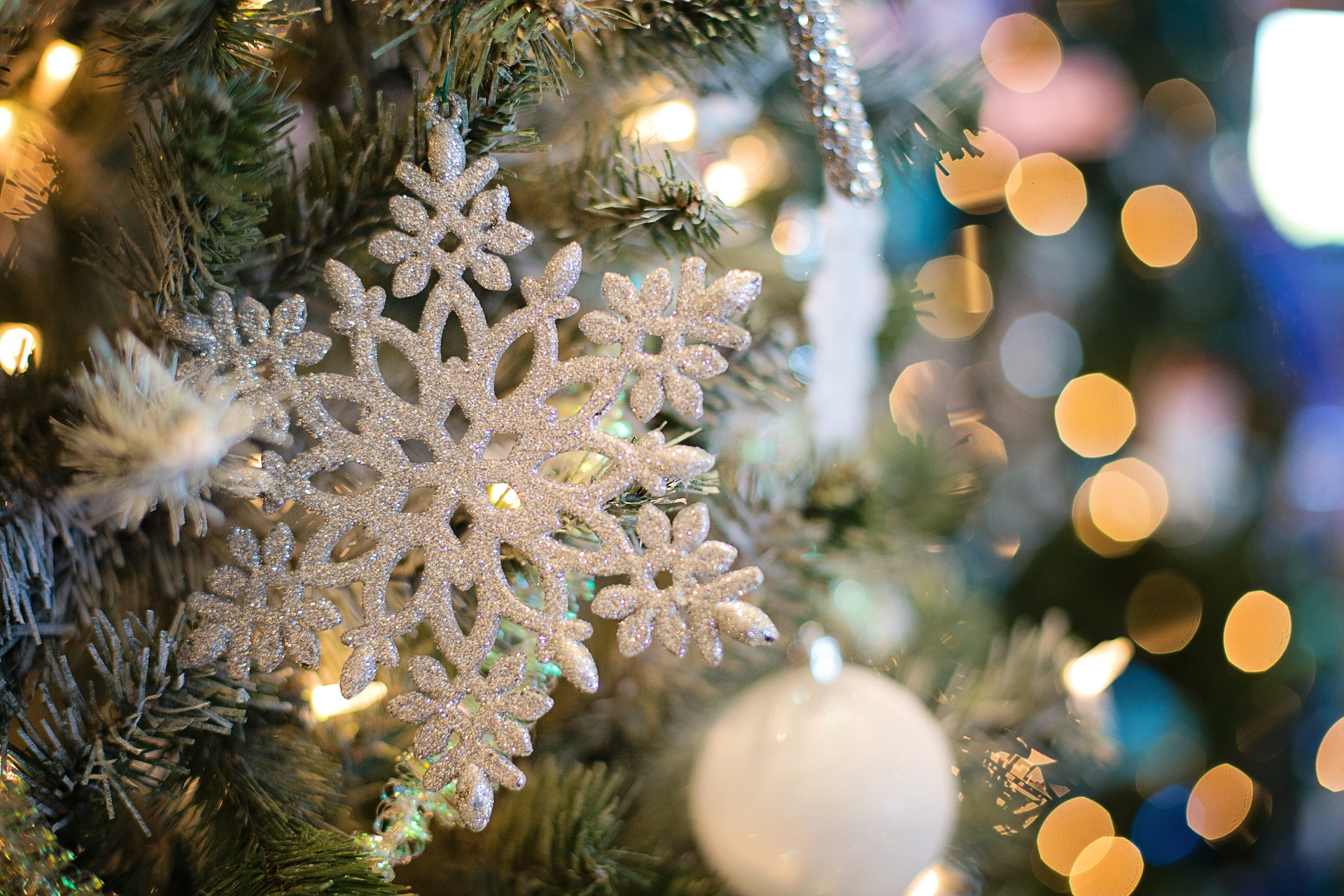 Christmas with the Milne House Garden Club