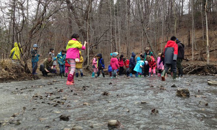 March Break: Bug-o-logy (Ages 4 to 7)