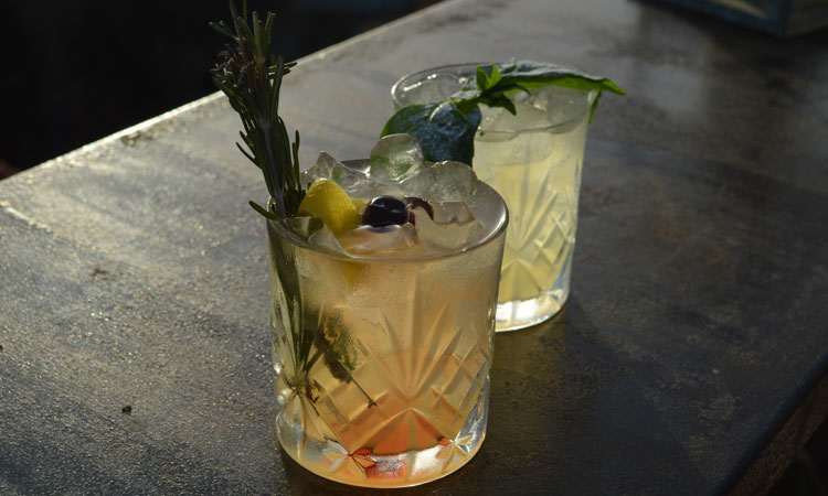 Mixology and Bitters 101