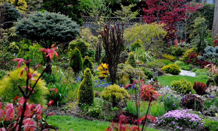 Adding Height to Your Garden