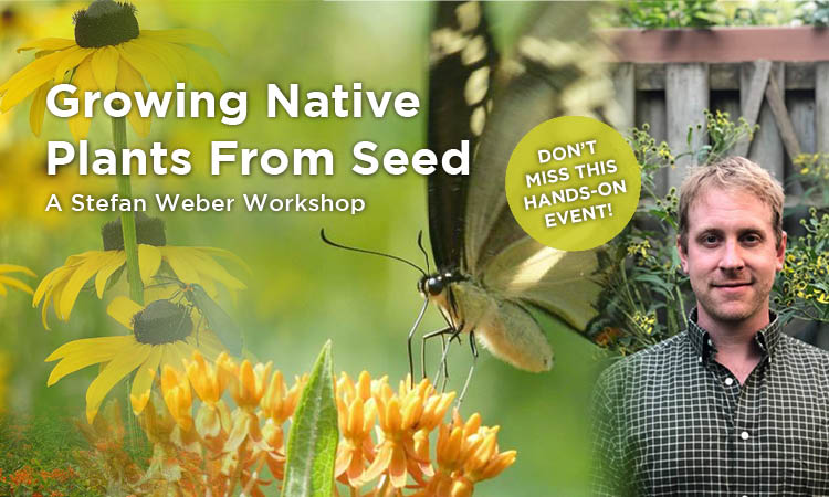 Growing Native Plants from Seed
