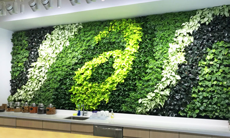Fundamentals of Living Wall