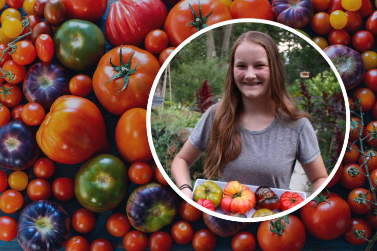 Tomatoes with Emma Biggs